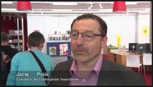 Vidéo découverte des insectes à la médiateque de Vallet - Nantes