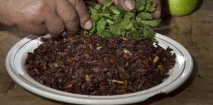 Photo plat mexicain aux sauterelles et punaises d'eau